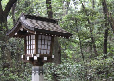 Meiji Shrine and Inari Shrine