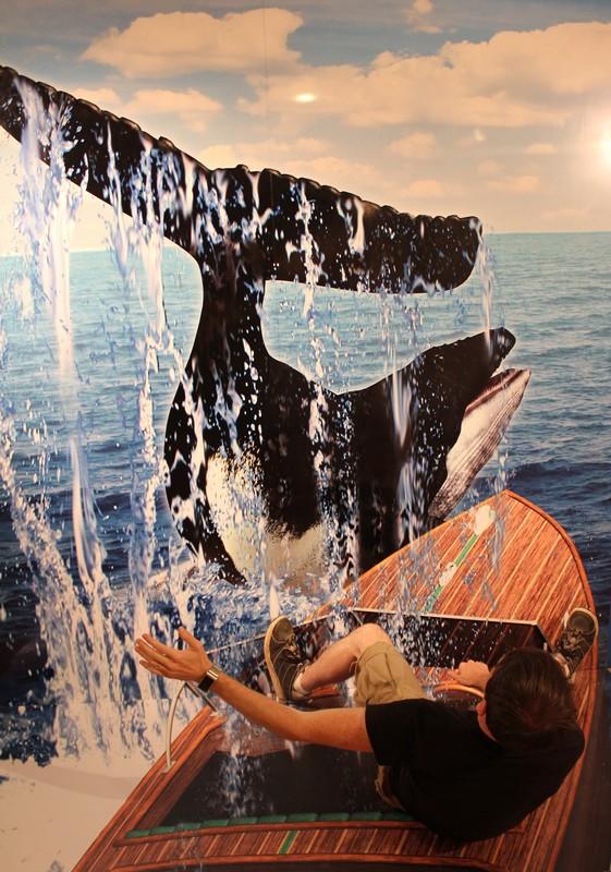 WEB_WhaleBoat