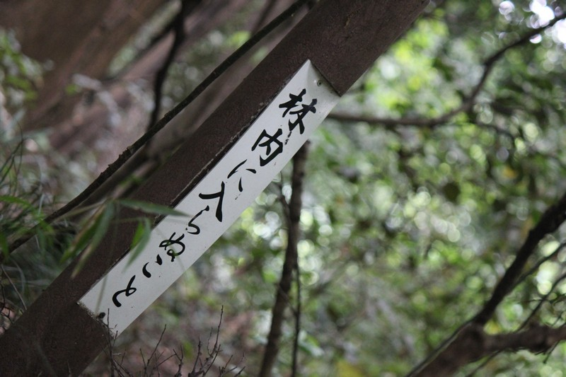 A sign in the woods on the path to the Shrine